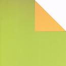 Kiwi-mais<br/>30 cm x 250 m