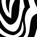 Zebra<br/>30 cm x 250 m
