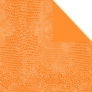 Lagato mandarine<br/>30 cm x 200 m