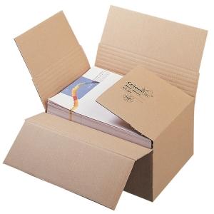 TOP-Angebote / Restposten - Blitzbodenkartons DIN A4 mit Höhenrillung