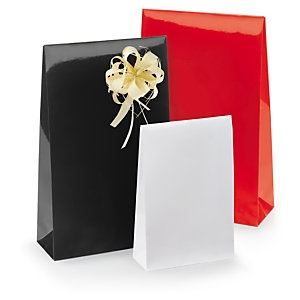Lackpapier-Beutel mit Haftverschluss